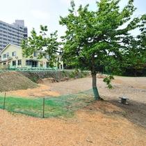 *ドッグラン/自然豊かな環境が整った広〜い敷地。思いっきり遊べます!