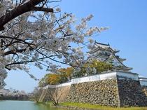 岸和田城 白砂の砂紋と石組みの造形が美しい八陣の庭が名所。大阪湾を一望できる城。
