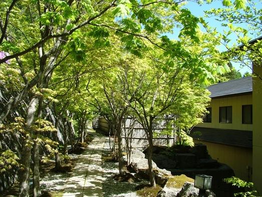 ☆川沿いの露天風呂で自然を満喫☆ 温泉につかりリフレッシュ☆彡