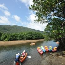 *カヌー体験/一番人気のジャングルツアー!二人乗りのカヌーでユツン川を進みます。