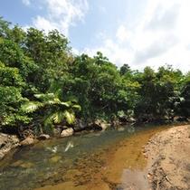 *周辺景色/ホテルのすぐそばを流れるホーラ川。こんな景色が目の前に!