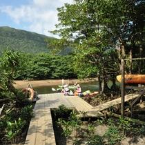 *パイヌマヤアドベンチャーパーク/当ホテル専用の自然体験施設。