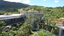 *外観/館内からは豊かに茂る亜熱帯の木々を眺めながらお過ごし頂けます。