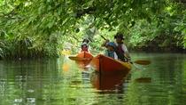 *カヌー体験/ジャングルの中をゆっくりと進んで行きます。
