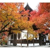 宝福寺『涙でネズミの絵を描いたことで有名な雪舟(せっしゅう)さんがいたお寺です。』