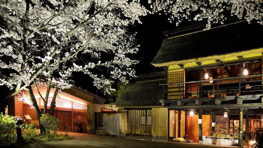 夜の長屋門 春