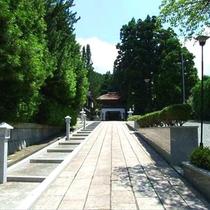 西門院参詣道・高野槙と竜宮門