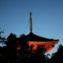 伽藍「大塔」ライトアップ