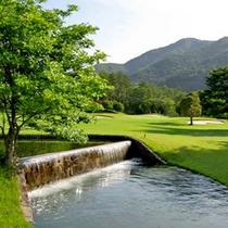 美しい緑の天然芝のゴルフコース。