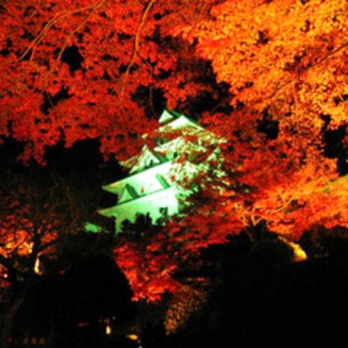 天空のもみじ庭園ライトアップ(11/10〜18)