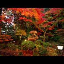 季節ごとに彩りを変える自慢の庭園です!