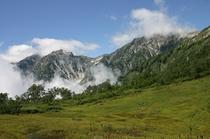 北アルプスの雄大な山々が眺められる栂池良自然園