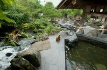 奥入瀬渓流 滝上の湯