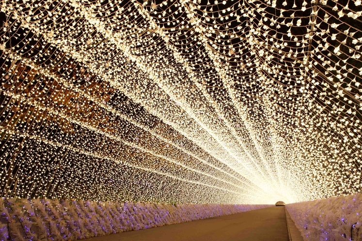 イルミネーション<光のトンネル>