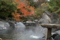 奥入瀬渓流 滝つぼの湯