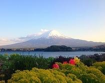 富士山遠景