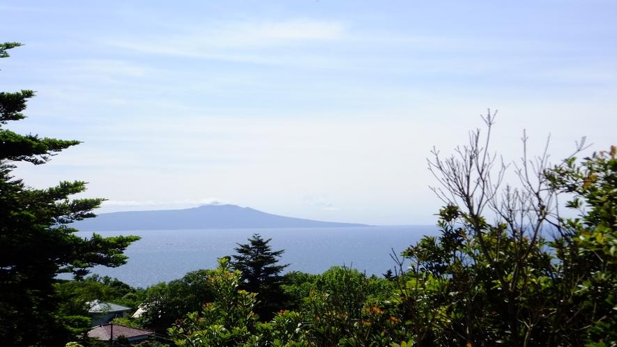 大島を望む 眺望