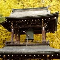飛騨国分寺(秋)