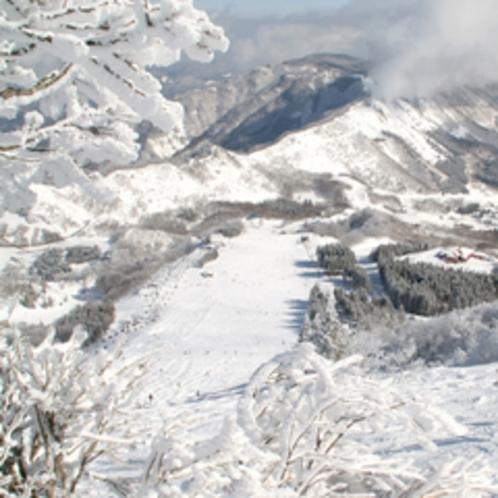 冬のハチ高原(イメージ)