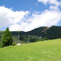 夏のハチ高原(イメージ)