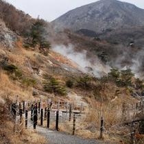 【小松地獄】多種の地嶽が歩道をはさんで見学できる。卵を持参すれば温泉卵が作れる。