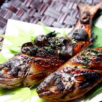 【山女魚の幽庵焼】幽庵ダレに山の幸の川魚を数日漬け込んで焼き上げる柚子の風味豊かな料理