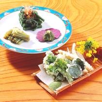*山菜王国秋田。5月〜6月は山菜が一番美味しい時期です!