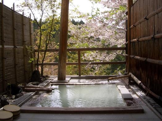 [栃木県民限定] 栃木県にこんな秘湯あったんだ!ふらっとにごり湯、癒し旅プラン!!