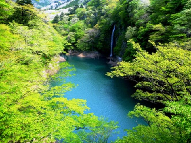 新緑の渓谷と回顧の滝