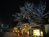 幻想的な雪の正面玄関