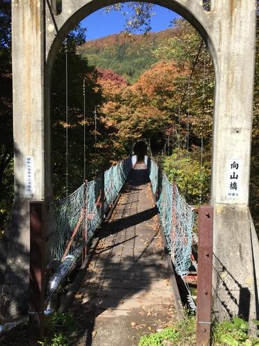 利根川の吊り橋