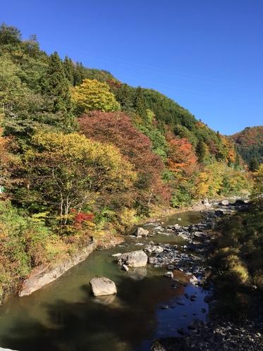 秋の利根川