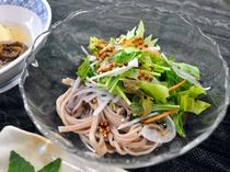 【ご夕食】清涼感ある見た目の蕎麦サラダ