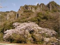 春の立久恵峡