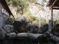 山桜の美しい絶景をご覧頂き、春の露天風呂を満喫して下さい!(宿泊者は無料!)