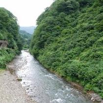 *瀬戸渓谷(夏)
