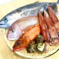 【厳選食材】天然鮮魚一例