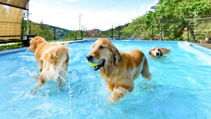 関西最大級のペット同伴可の宿泊施設!ペットとコテージにお泊りしよう!!プラン♪♪