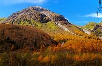 紅葉の焼岳