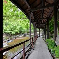 *【渡り廊下】日々の喧騒を忘れさせてくれる風情溢れる佇まい。山の彩りと川のせせらぎに思いを馳せて。