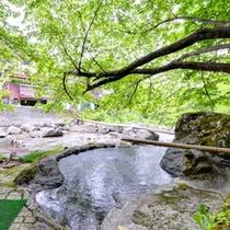 *【野天風呂】春は新緑、夏は涼風、秋は紅葉、冬には雪見風呂がお楽しみ頂けます。