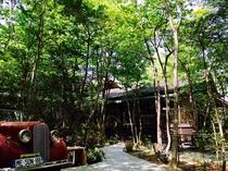森のエントランス(森の小径)