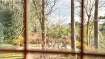 *【お部屋一例】窓からの景色