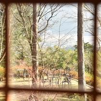 *【客室一例/窓際の風景】