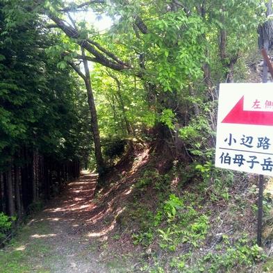 ☆世界遺産・熊野古道「小辺路」を歩こう!☆【鴨鍋・大股登山口送迎】