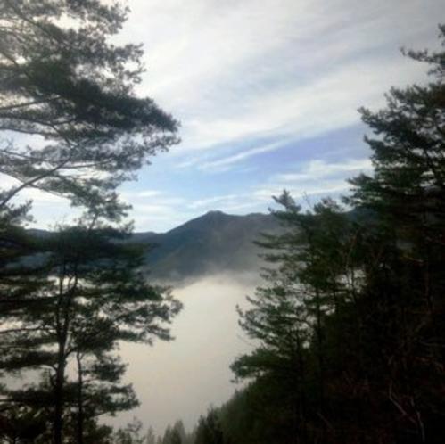 林道からの雲海