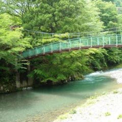 ホテル前長寿橋と新緑