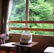 窓の外は緑がいっぱい
