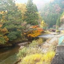 ホテル裏を流れると川と紅葉