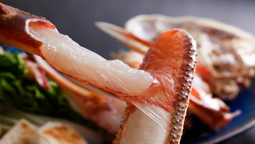 松葉蟹 イメージ